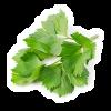 Agro-Neretva