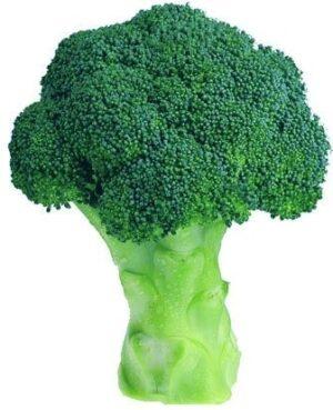 agro-neretva brokula green magic