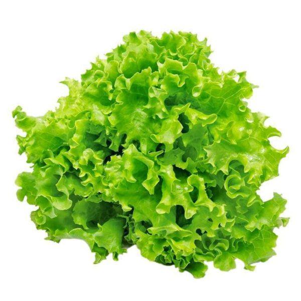 agroneretva Salata Kristal
